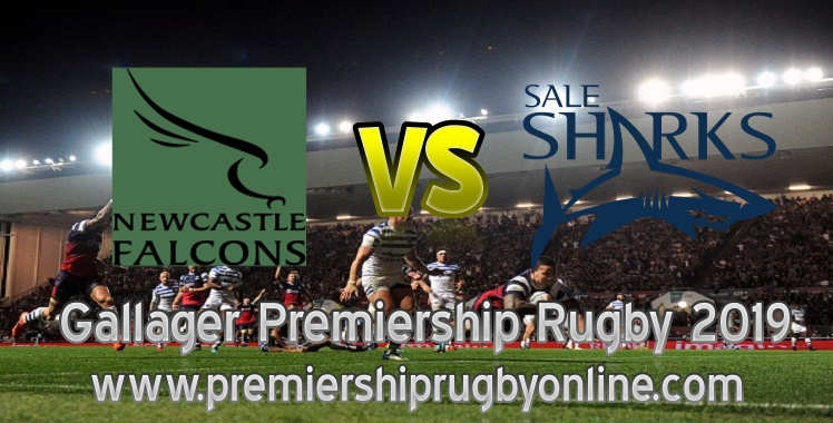 live-falcons-vs-sharks-2019-rugby