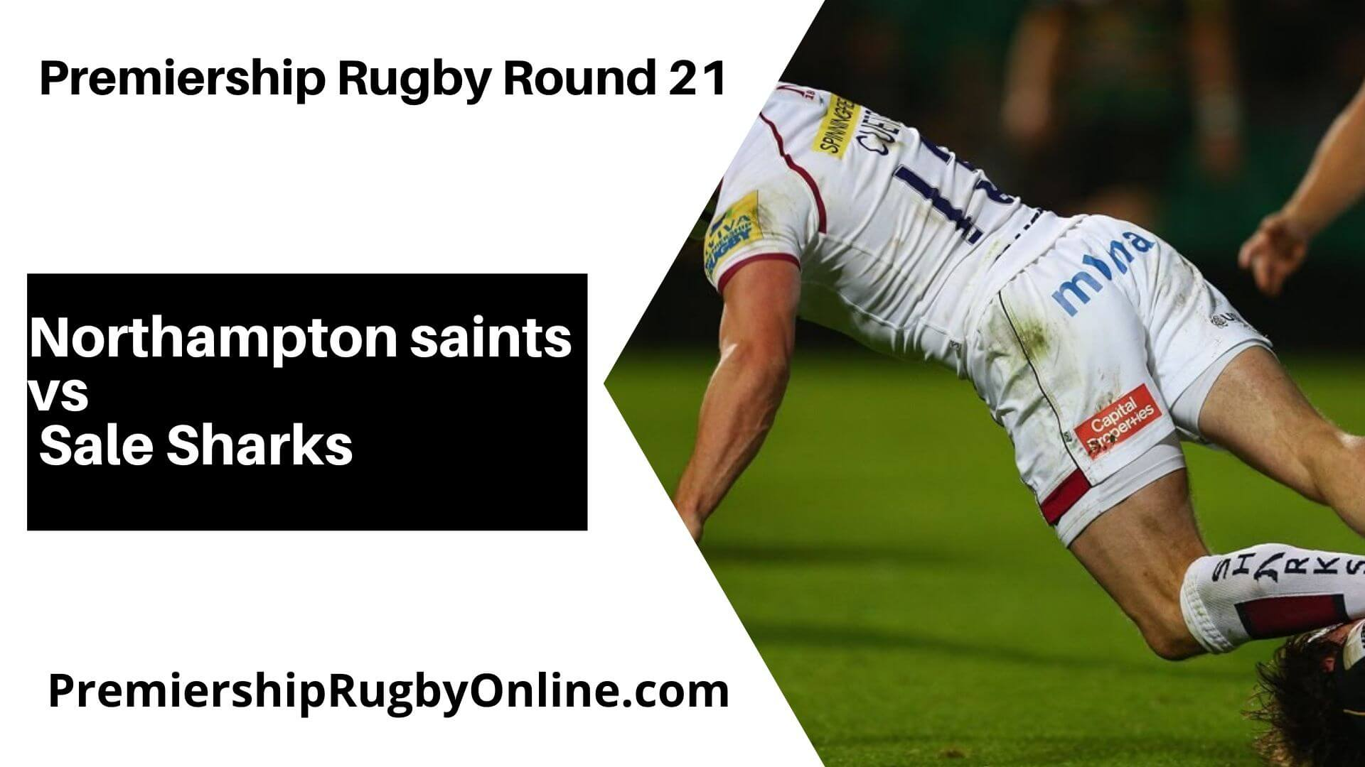 Northampton Saints vs Sale Sharks Live Stream   Round 21