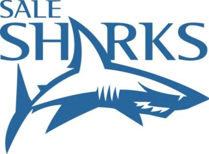 Live Sale Sharks
